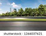 panoramic skyline and modern...   Shutterstock . vector #1266037621