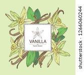 background with vanilla  flower ... | Shutterstock .eps vector #1266060244