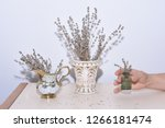 three vases with lavender are...   Shutterstock . vector #1266181474