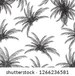 palm silhouette on white... | Shutterstock . vector #1266236581
