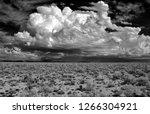sonora desert in infrared... | Shutterstock . vector #1266304921