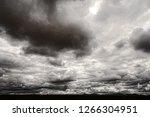 the sonora desert in central... | Shutterstock . vector #1266304951