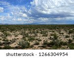 the sonora desert in central... | Shutterstock . vector #1266304954
