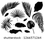 set of palm leaves silhouettes... | Shutterstock .eps vector #1266571264