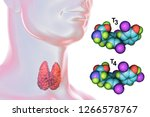 molecules of thyroid hormones... | Shutterstock . vector #1266578767