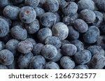 frozen dutch blueberries  | Shutterstock . vector #1266732577