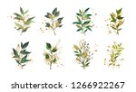 gold green tropical leaves... | Shutterstock .eps vector #1266922267