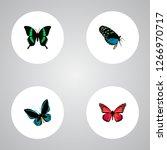 set of moth realistic symbols... | Shutterstock .eps vector #1266970717