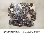 magnetite. fossil stones in the ... | Shutterstock . vector #1266995494