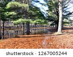 sub freezing lake with colorful ... | Shutterstock . vector #1267005244