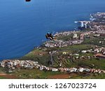 Tandem fliers, skysurfers high above the Orotava valley on tenerife on the north coast. blue Atlantic, Los Realejos and after Puerto de la Cruz is the coastline to see as well as the two airmen