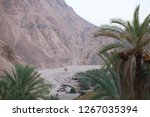 day trip in dahab  egypt | Shutterstock . vector #1267035394