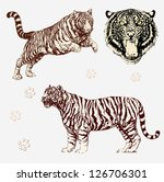 vector set  tiger shapes and... | Shutterstock .eps vector #126706301