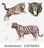 Vector Set  Tiger Shapes And...