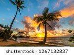 Panoramic Tropical Sunrise From ...
