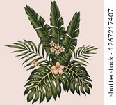 vector tropical leaves and... | Shutterstock .eps vector #1267217407