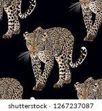 Vector Sketch Of Walks Leopard...