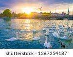 Sunset Scene Over Lake Zurich...