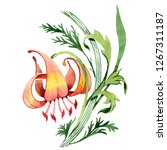 orange lily floral botanical...   Shutterstock . vector #1267311187