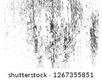 abstract background. monochrome ... | Shutterstock . vector #1267355851