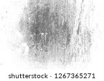 abstract background. monochrome ... | Shutterstock . vector #1267365271