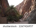 day trip in dahab  egypt | Shutterstock . vector #1267426957