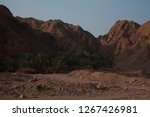 day trip in dahab  egypt | Shutterstock . vector #1267426981
