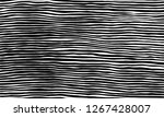 vector illustration of the... | Shutterstock .eps vector #1267428007