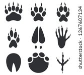 animal paws  hoofs and foot... | Shutterstock .eps vector #1267607134