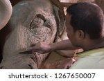 delhi  india   october 16 2018  ... | Shutterstock . vector #1267650007