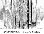 abstract background. monochrome ... | Shutterstock . vector #1267752337