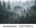 misty foggy mountain landscape...   Shutterstock . vector #1267763911