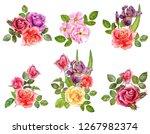 watercolor drawing flowers... | Shutterstock . vector #1267982374