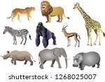 group of african animal wild... | Shutterstock .eps vector #1268025007