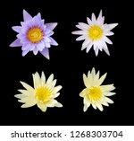 set of lotus flower isolated on ...   Shutterstock . vector #1268303704