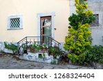 cozy porch with flower pots ... | Shutterstock . vector #1268324404