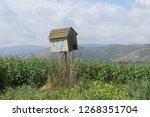 bird house and panoramic...   Shutterstock . vector #1268351704