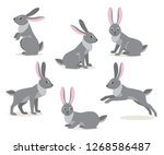 Stock vector set of icon cute gray hare in different pose isolated on white background forest woodland animal 1268586487