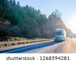 big rig green modern bonnet...   Shutterstock . vector #1268594281