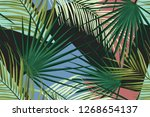 seamless tropical palm leaves... | Shutterstock . vector #1268654137