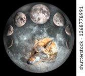 wolf head inside the full moon... | Shutterstock . vector #1268778991