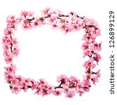 Spring Flowering Branches  Pin...