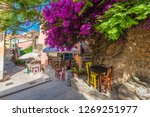 street with flower on... | Shutterstock . vector #1269251977