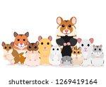 group of hamsters | Shutterstock .eps vector #1269419164