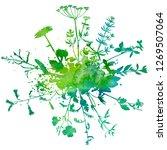 watercoolor green background... | Shutterstock . vector #1269507064