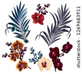 collection of vector tropical... | Shutterstock .eps vector #1269683911