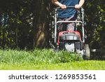 mowing the grass with a lawn... | Shutterstock . vector #1269853561