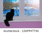 Small photo of Black cat looking out window behind which snowy winter. Cat sitting on windowsill and watching winter village. Rural winter landscape. Cat looking in window with cold winter beyond