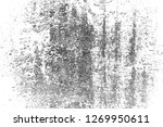 abstract background. monochrome ... | Shutterstock . vector #1269950611