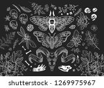 witch kit. a huge set of items. ... | Shutterstock .eps vector #1269975967